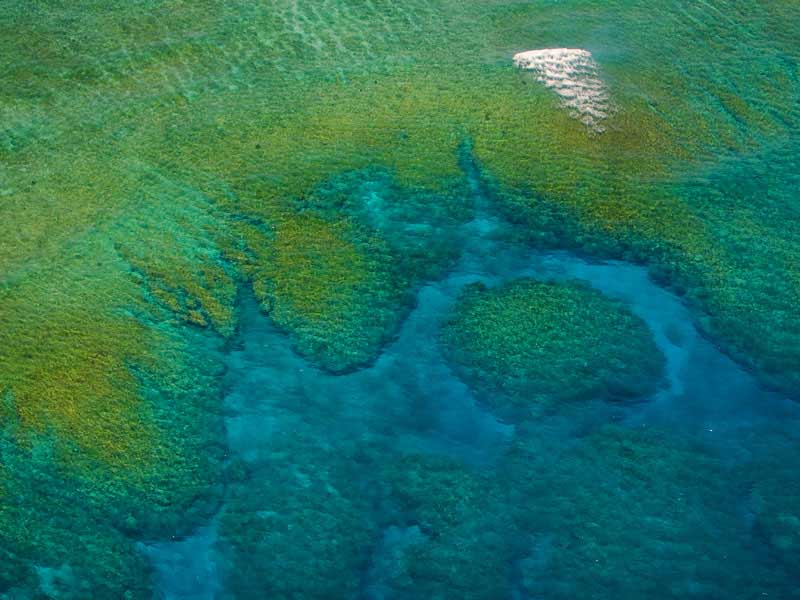 Aerial view of Naitauba reef