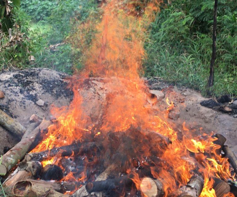 Biochar fire burning wood gas only (no smoke).
