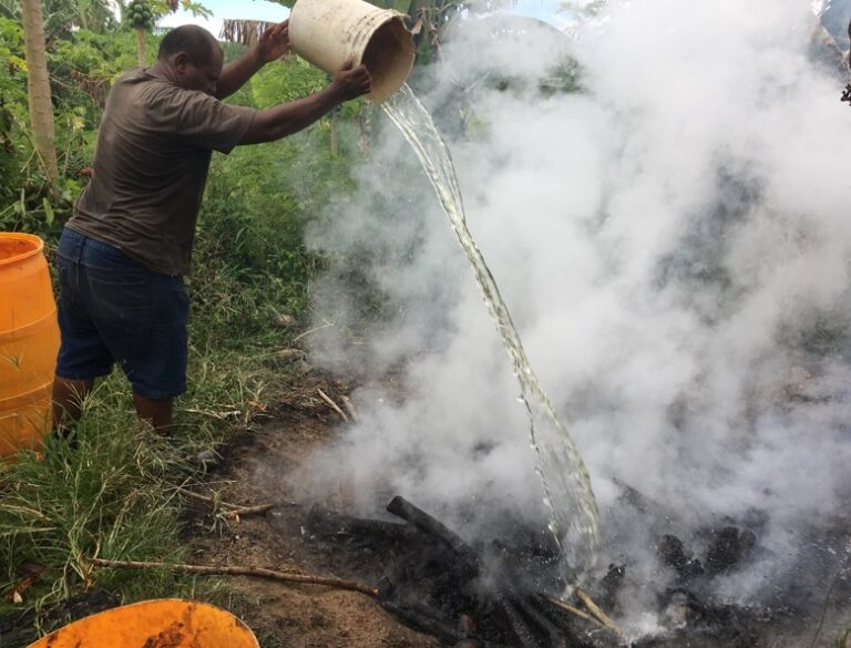 Quenching the biochar fire with water.